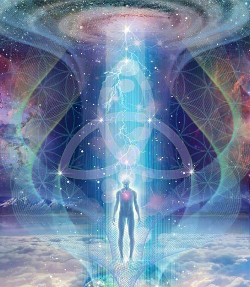 levensbloem en het universum